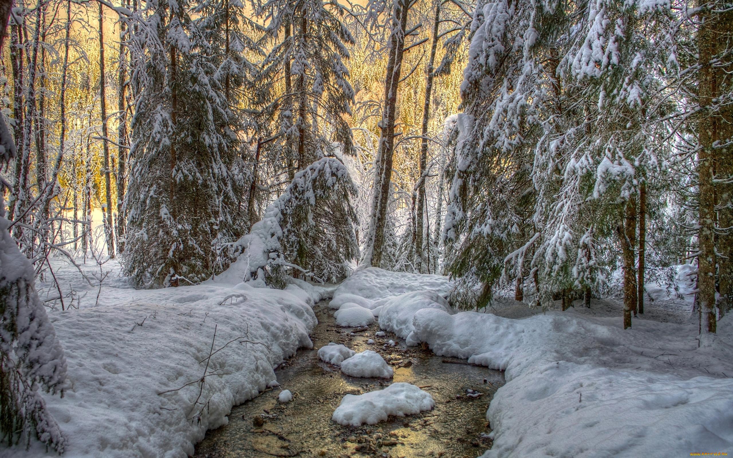 Макияж как у лесной нимфы фото